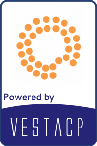The server uses VestaCP development